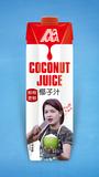 1L-5A椰子汁